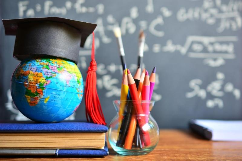 OCSE indagine stato istruzione